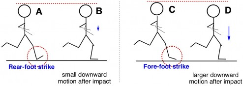 Vertical leg compliance running rear-foot and fore-foot strike