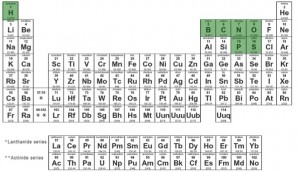 periodic table elements of life alternative life