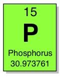 phosphorus arsenic bacteria