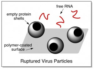 flu virus how to disinfect