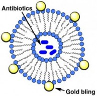 Bacterial Toxin-Triggered Drug Release from Gold Nanoparticle-Stabilized Liposomes for the Treatment of Bacterial Infection