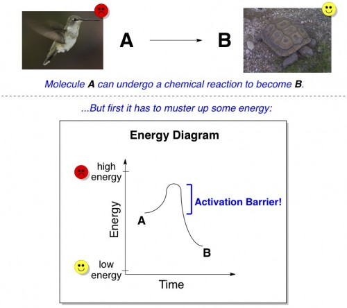 activation barrier energy diagram 2nd law of thermodynamics
