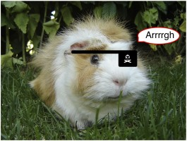 guinea pig scurvy vitamin C ascorbic acid biosynthesis