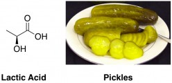lactic acid chemical structure sour pickles
