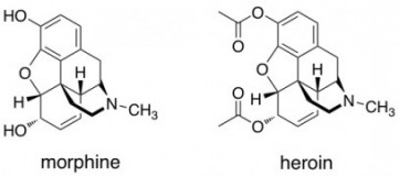 chemical structure of morphine and heroin